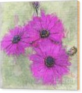 Purple Daisy Trio Watercolor Photoart Wood Print