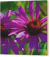 Purple Daisy's Wood Print