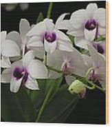 Purple Dendrobium Stem Wood Print