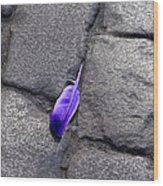 Purple Feather Wood Print
