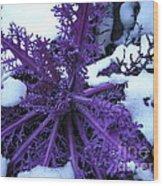 Purple Foliage In Winter Wood Print
