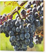 Purple Grapes Wood Print by Elena Elisseeva