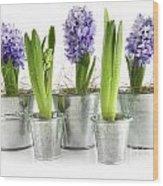 Purple Hyacinths Wood Print by Sandra Cunningham