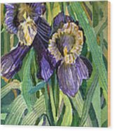 Purple Irises Wood Print by Mindy Newman