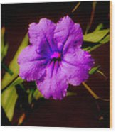 Purple Is The Color Wood Print