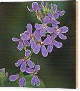 Purple Joy Wood Print