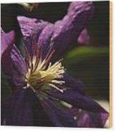 Purple Lady Wood Print