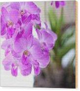 Purple Mini Orchids Wood Print