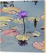 Purple Mirror Wood Print