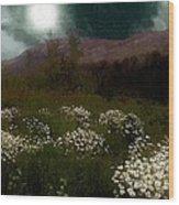 Purple Mountain Meadow Wood Print