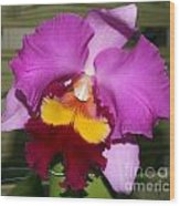 Purple Orchid Wood Print