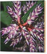 Purple Points Wood Print