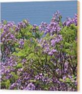 Purple Prelude Wood Print