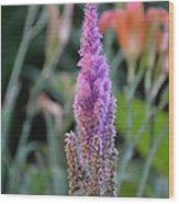 Purple Spear Wood Print