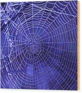 Purple Spiderweb Wood Print