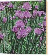 Purple Spikes Wood Print