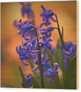 Purple Sunset Wood Print