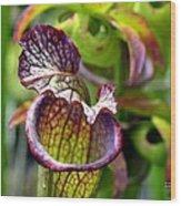 Purple Veins Wood Print
