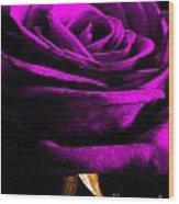 Purple Velvet Rose Wood Print by EGiclee Digital Prints