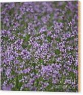 Purple Wildflowers Square Wood Print
