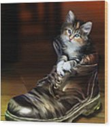 Puss In Boot Wood Print