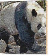 Puttin On The Panda Ritz Wood Print