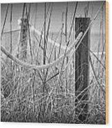 Pylons On The Beach Wood Print