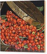 Pyracantha Berries Wood Print