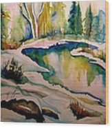 Quebec Winter Landscape Wood Print