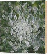 Queen Anne Pin Wheel Wood Print