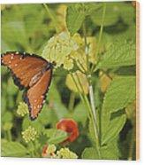 Queen Of The Lantana Wood Print