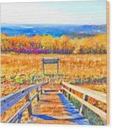 Queen Wilhelmina State Park Wood Print