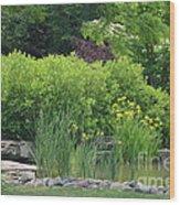 Quiet Pond Wood Print
