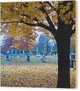 Quiet Time Wood Print by Gordon Beck
