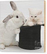 Rabbit And Kitten In Top Hat Wood Print