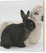 Rabbit And Lamb Wood Print