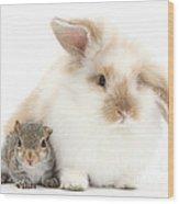 Rabbit And Squirrel Wood Print