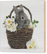 Rabbit In A Basket With Flowers Wood Print