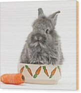 Rabbit In A Food Bowl With Carrot Wood Print