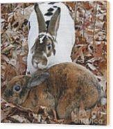 Rabbit Love Wood Print