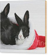 Rabbits In Hat Wood Print