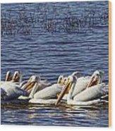 Raft Of Pelicans Wood Print