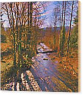 Raging River Near Preston Wood Print