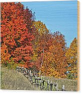 Rail Fence In Fall Wood Print by Peg Runyan