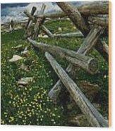 Rail Fence No.1812 Wood Print