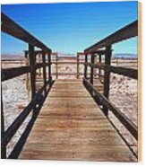 Rail Path Wood Print