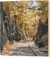 Rail Road Cut Wood Print