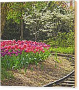 Railroad Beauties Wood Print