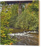 Railroad Bridge 7827 Wood Print by Michael Peychich