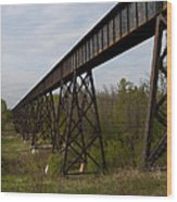 Railroad High Bridge 3 Wood Print